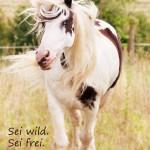 Sei_wild_sei_frei